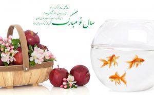 عیدی از ما سرور بگیرید